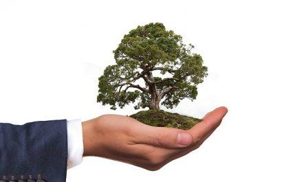 Solutions to environmental problems , পরিবেশ দূষণ ও তার প্রতিকার