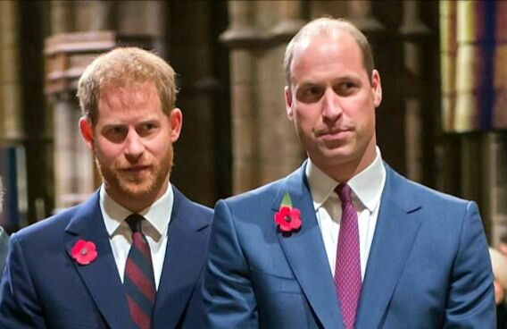 Prince Harry & Prince William blames BBC for mother's death